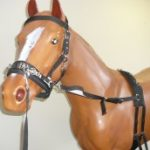 Horse Education Equpiment