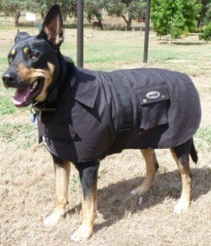 Nullabor Oilskin Dog Coat